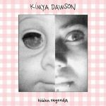 Album Cover Hidden Vagenda Kimya Dawson